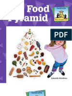The Food Piramyd