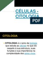 AULA CITOLOGIA