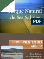 Parque Natural de Ses Salines (Ibiza y Formentera)
