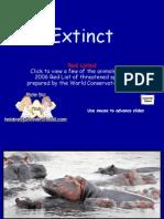 Extinct 08-04-06