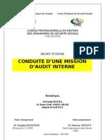 Une Mission d Audit Interne PDF