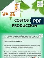 Costos_83396
