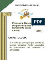 Aula i Parasitologia Cetesi