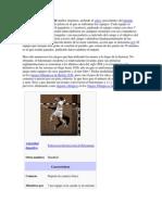 El Balonmano o Handball