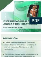 Enfermedad Diarreica Aguda y Deshidratacion