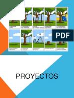 Capacitación Proyectos