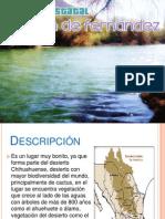 Parque Estatal Cañón de Fernández