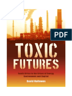 Toxic Futures - South Africa in the Crises of Energy, Environment and Capital