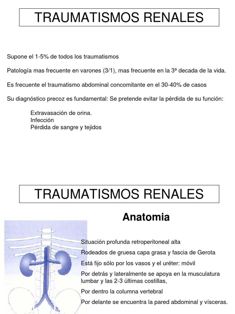 TRAUMATISMOS RENALES 2