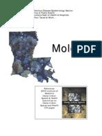 Fungi Toxic Molds Summary