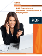 BSS Consultancy Software Development and Deplyment