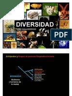 ARTROPODOS_Diversidad