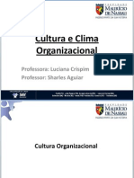 aula_cultura_organizacional