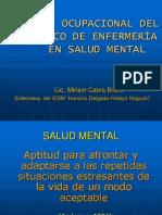 Perfil Ocupacional en Salud Mental