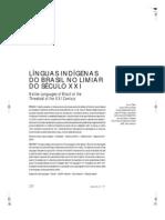 Linguas Indigenas Do Brasil no Limiar do Século XXI