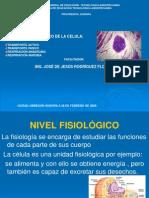 Nivel Fisiologico de La Celula
