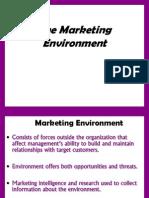 4. Marketing Environment