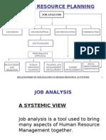 1 Job Analysis