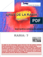 Virus Rabia
