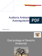 Auditoria Ambiental (F Ruanova)