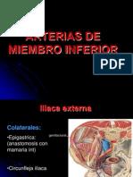 Arterias de Miembro Inferior
