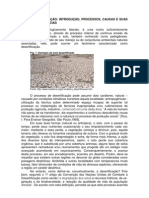 O processo de desertificação pode assumir dois caráteres