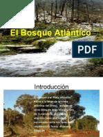 SERGIO El Bosque Atlántico