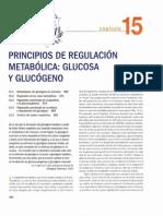Pricipios de regulación metabólica- glucosa y glucogeno