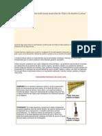 Los instrumentos en las tradiciones musicales de Chile y de América Latina