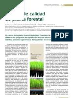 Control Calidad Planta Forestal