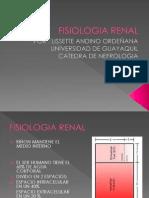 Fisiologia Renal Por Lis Andino1