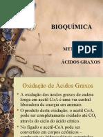 BIOQUÍMICA oxidacao acidos graxos2010