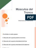 Presentacion Morfolologia y Fisiologia Musculos Del Tronco