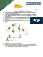 Examen Bat Plantas(t7)
