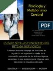 Fisiologia y Metabolismo Cerebral