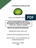 1 Informe de Experiencia Profesional de Vladimir Carlos Rodriguez Salazar