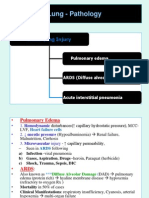 18436469 Lung Pathology