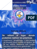 Campos clínicos NORMA 18 final