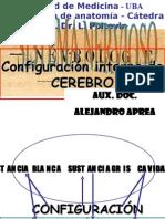 Clase Introductoria Al TP39 Diencéfalo