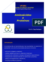 4. Aminoácidos e Proteínas