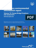 PEIR Main Report Vol10 Putney Bridge Foreshore