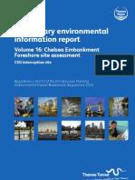 PEIR Main Report Vol16 Chelsea Embankment Foreshore
