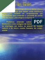 os cinco elementos(Roberta) - 3 MODULO