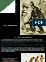 Fatouh - 2do año - Evolución