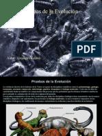 Fatouh - 2do año - Pruebas de La Evolución