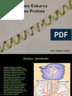 Fatouh - 2do año - Reino Protista