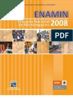 ENAMIN_2008