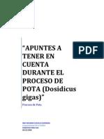 pota_proceso