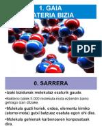 1.MATERIA BIZIA_anaya
