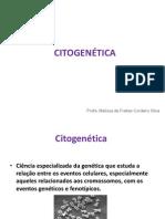 CITOGENÉTICA_-_FAM2